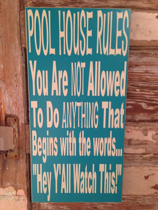 Pool House Rules You Are Not Allowed To Do Anything That