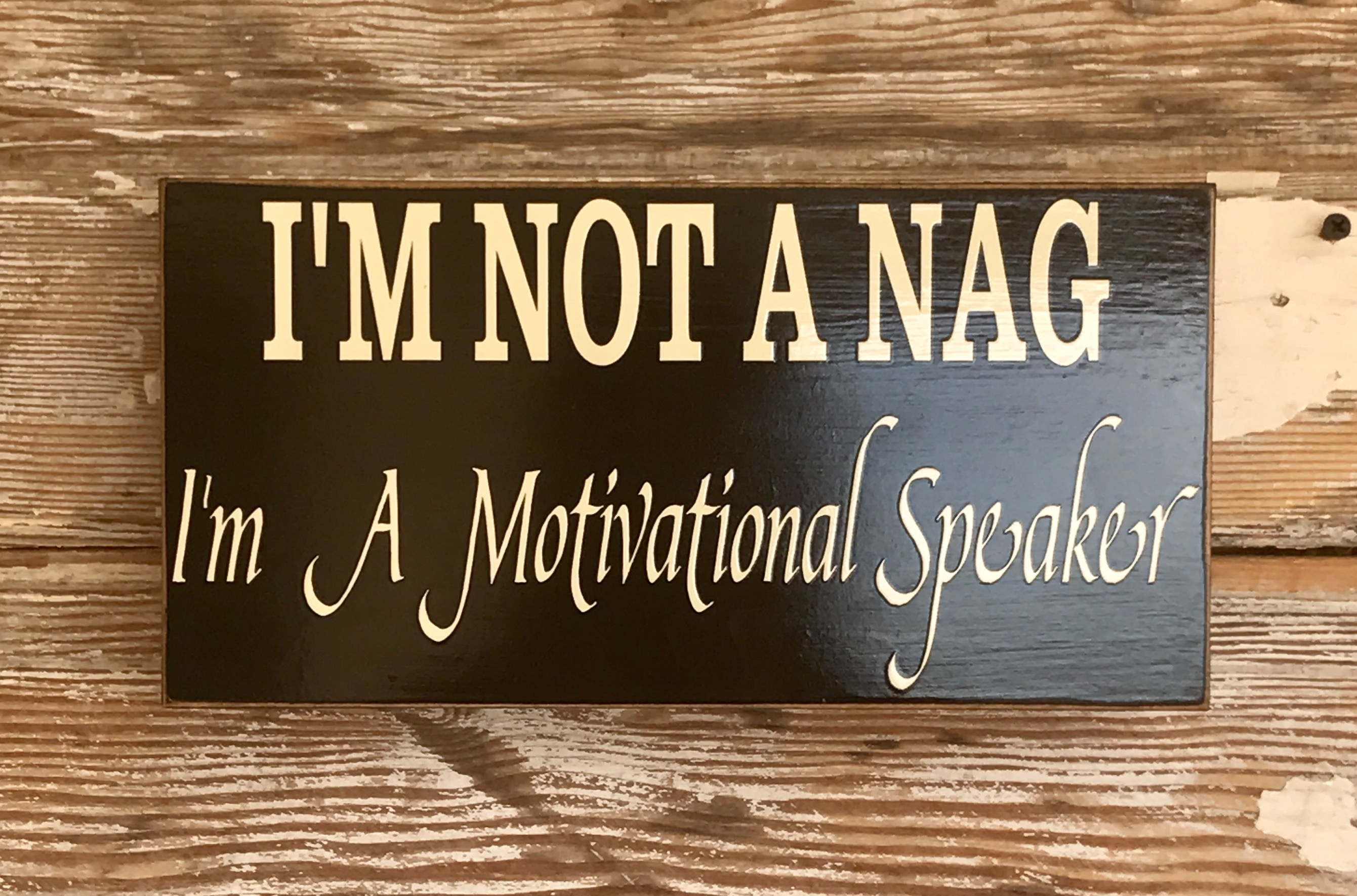 I'm Not A Nag.  I'm A Motivational Speaker.  Wood Sign