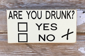 Are You Drunk?  Yes or No.  Wood Sign