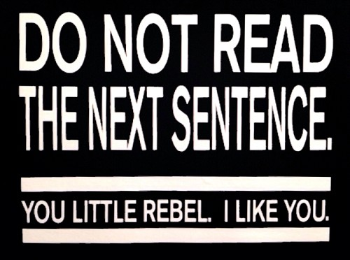 Do Not Read The Next Sentence.  You Little Rebel.  I Like You.  Vinyl Decal