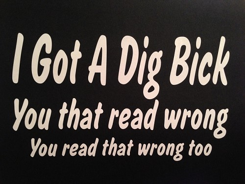 I Got A Dig Bick.  You That Read Wrong.  You Read That Wrong Too.  Vinyl Decal