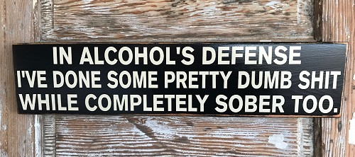 In Alcohol's Defense, I've Done Some Pretty Dumb Shit While Completely Sober Too.  Wood Sign
